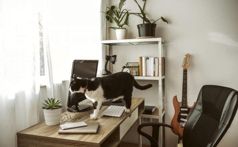 3 moduri de optimizare a biroului de acasă
